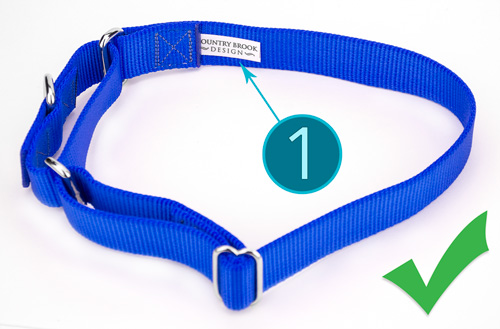 Position a Martingale this way before you put it over the dog's head.